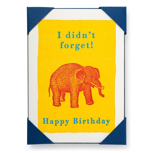 Forgetful Elephant