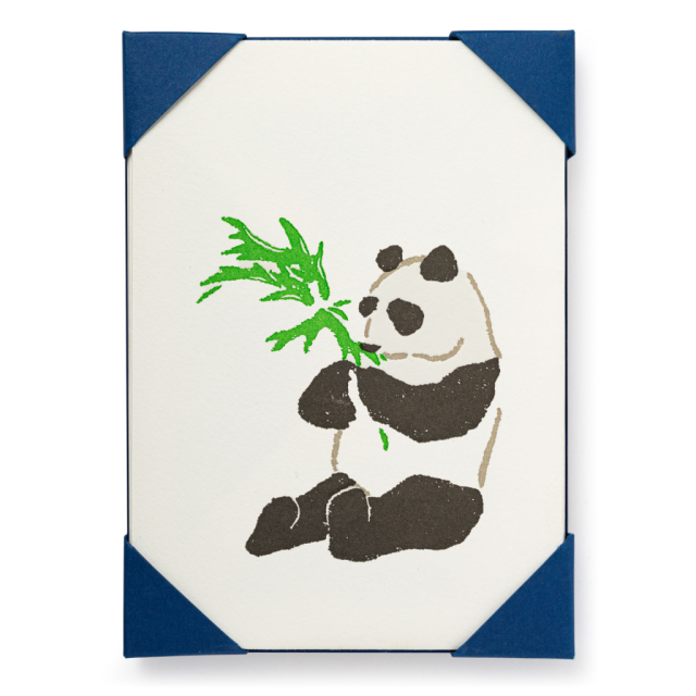 Panda - Notelets Packs - from Archivist Gallery
