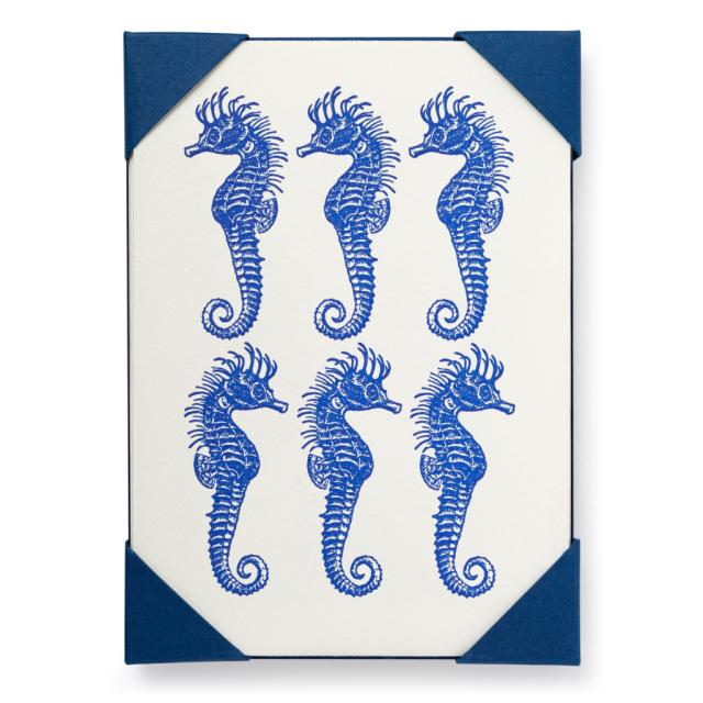 Six Seahorse