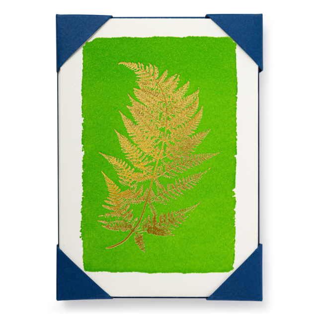 Fern - Notelets Packs - from Archivist Gallery