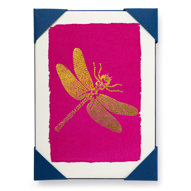 Dragonfly - Notelets Packs - from Archivist Gallery