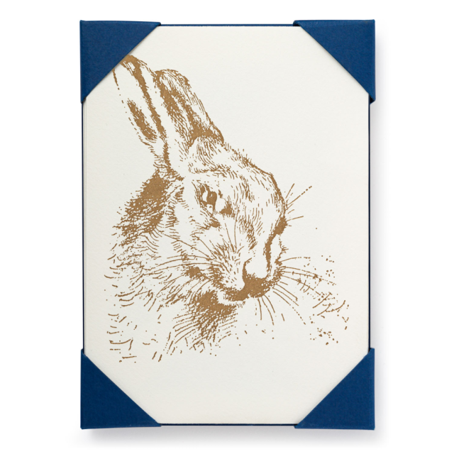 Hare - Notelets Packs - from Archivist Gallery