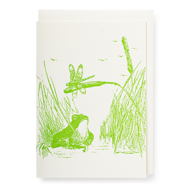 Frog - Notelets Singles - from Archivist Gallery