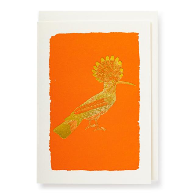 Orange Hoopoe