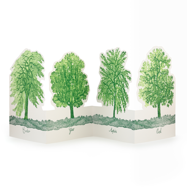 Trees - Greeting Cards - Natural History Museum - from Archivist Gallery