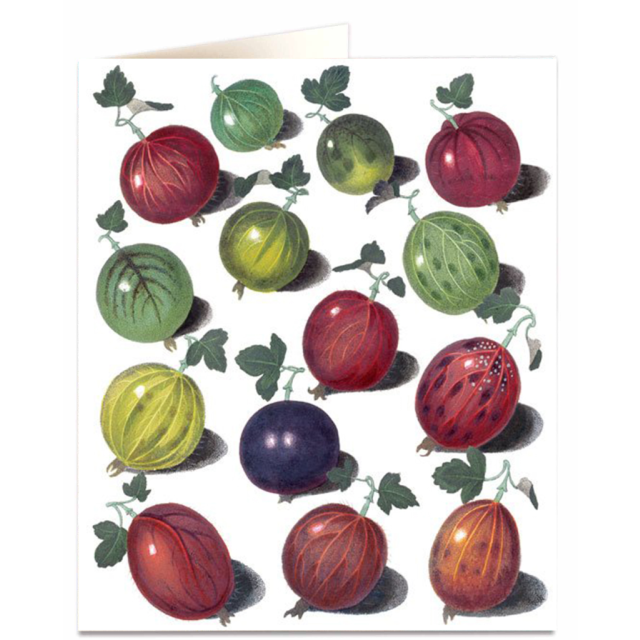Goosberries - Letterpress Cards - Natural History Museum - from Archivist Gallery