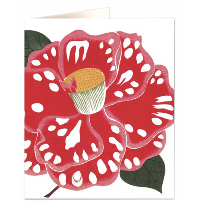 Polka dot camellia - Letterpress Cards - Natural History Museum - from Archivist Gallery