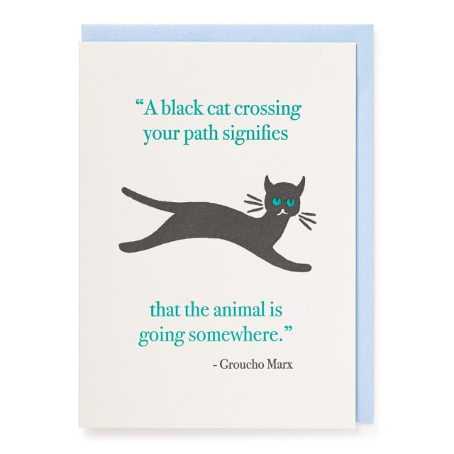 Cat crossing path