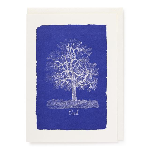 Natural History Oak Tree